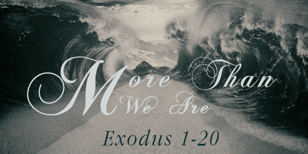 More Than We Are | A Study of Exodus 1-20